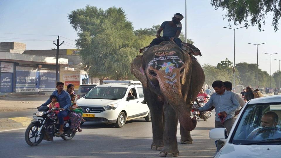 Expedición por el norte – Llegada a Jaisalmer