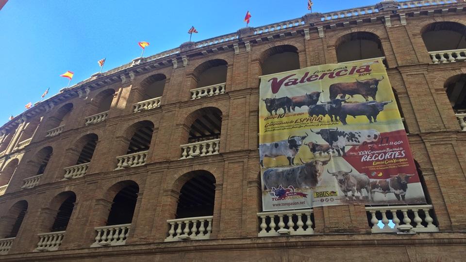 Comunidad Valenciana – Castellón y Valencia en fallas